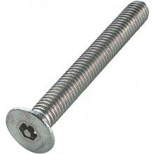 M4 X 10Mm Tamper Resistant S.S.S Pin Hex Machine Csk Screws